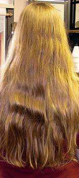 Forensic test to identify hair color from DNA