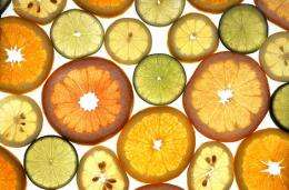 Fruit and veg unlikely to add protecttion against cancer