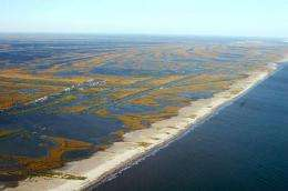 Gulf oil spill: Mississippi River hydrology may help reduce oil onshore