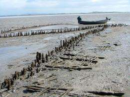 Irish medieval fishing site will be 'lost to the tide'