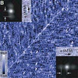 Iron, copper superconductors display similarities