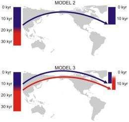 Skulls show New World was settled twice: study