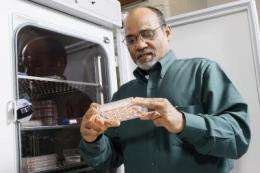 Listeria clever at finding its way into bloodstream, causing sickness