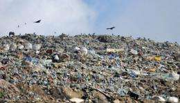 """Lucy Walker's film """"Waste Land"""" follows the lives of rubbish pickers surviving on a Brazilian landfill"""
