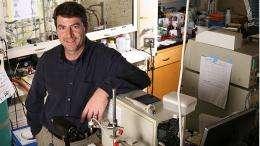 Mussel-inspired 'glue' for fetal membrane repair