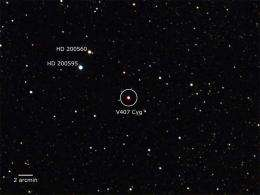 Fermi detects 'shocking' surprise from supernova's little cousin
