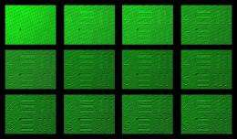 Engineers turn noise into vision