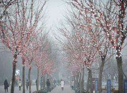 People walk along a street in thick smog in Beijing