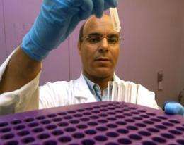 Plant derivative could help refine cancer treatment