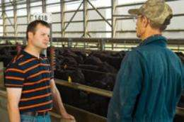 Research recommends starting cattle on corn, finishing on co-products