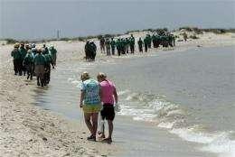 Tarball encounters at beach no health hazard (AP)