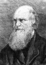 This undated engraving shows English naturalist Charles Darwin