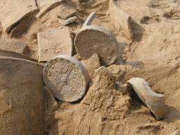 Chinese site excavation one of top science stories of the year