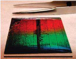 Trapping Sunlight with Silicon Nanowires