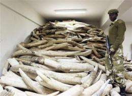 UN rejects Tanzania request for one-off ivory sale (AP)
