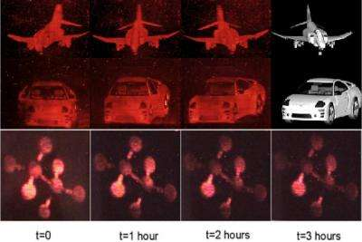 Researchers analyze performance of first updatable holographic 3D display